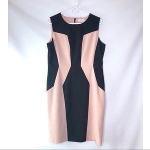 Calvin Klein Sheath Dress SZ 14